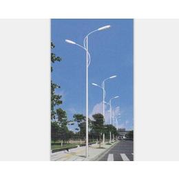 太阳能庭院灯、南昌开元照明(在线咨询)、新余太阳能路灯