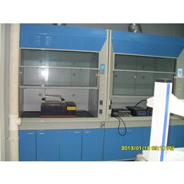 各類工作臺全鋼木通風柜,實驗室家具實驗臺藥品柜
