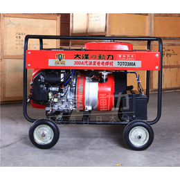 300A便携式发电电焊机价格
