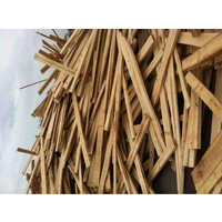 木材蓝变的有哪些原因?危害有哪些呢?