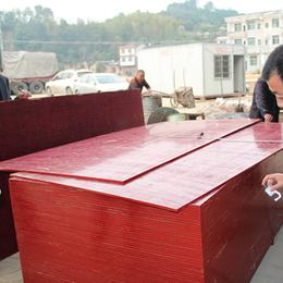 清水竹胶板 密实度好 周转次数高  厂家直销  大量供应