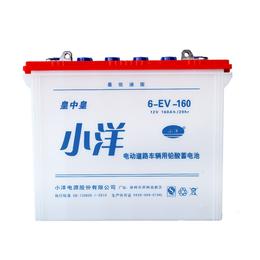 6-EV-160型巡逻车新能源蓄电池