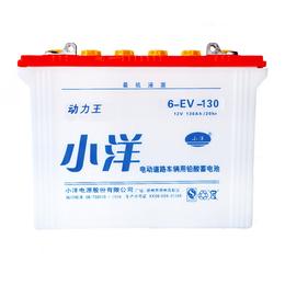 6-EV-130型 旅游观光车电池