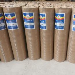 镀锌电焊网建筑工地墙面防裂批荡网现货抹灰网铁丝网