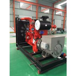 制药厂用200KW冷热电三联供燃气发电机组 可配置脱硝系统