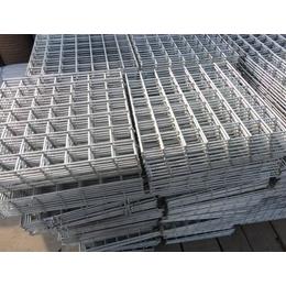 亳州苗床网片-镀锌苗床网片-规格齐全-特价销售