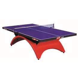 乒乓球桌TCH大彩虹國際高級比賽大賽室內標準乒乓球臺