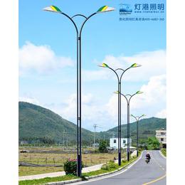太阳能路灯厂家,灯港照明,上海路灯