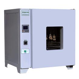 LDO-101-1 电热恒温鼓风干燥箱 高温试验箱