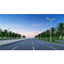 12米路灯灯杆价格|榆林路灯|维加斯灯饰