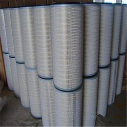 抛丸机喷砂抛光qy8千亿国际粉末回收滤筒3266粉尘滤筒
