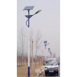 定州楷举照明生产厂家6米太阳能LED路灯美丽乡村改造用