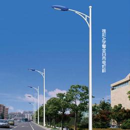 供应6米市电灯 热镀锌喷塑 光源可配LED 金卤灯 钠灯