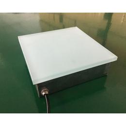 厂家批发广场LED弧形地砖灯 尺寸可定制100