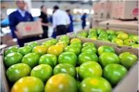 水果打蜡能安全食用吗?解惑水果常见5大问题
