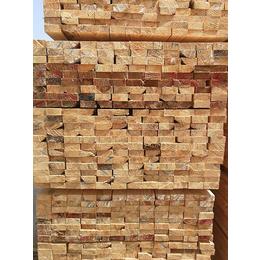 辐射松木方供应,辐射松木方,武林木材加工厂(查看)