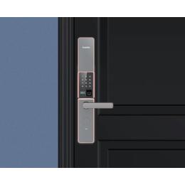 凯迪仕指纹锁家用防盗门密码锁v5
