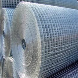 铁丝镀锌电焊网建筑外墙抹墙电焊网改拔丝电焊网圈水稻网缩略图