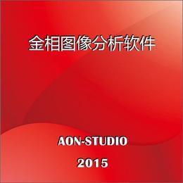 金相****图像分析系统JX2015版金相自动评级软件现货供应