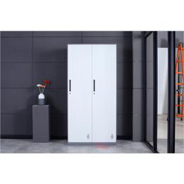 钢制加厚拆装铁皮柜文件柜资料柜彩色储物柜凭证柜办公柜矮柜带锁