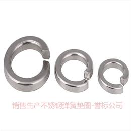 石标牌Q6-Q300 不锈钢A2-70弹垫生产厂家