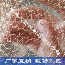 现货供应压波纹紫铜汽液过滤网 单股紫铜针织网
