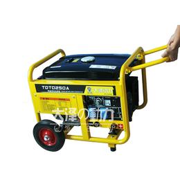 大泽动力250A汽油发电电焊两用机价格