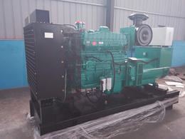 生态养殖园鸡粪污水200KW燃气发电机 鸡粪发酵气体利用工程