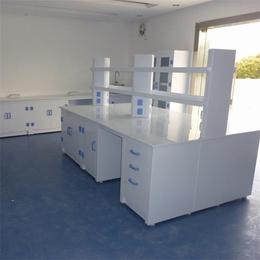 内蒙古PP实验台-保全实验室设备生产商-PP实验台品牌型号