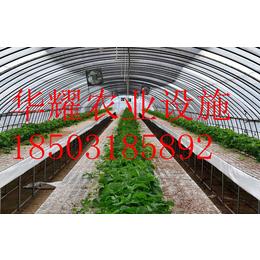 温室大棚种植-温室草莓-温室种植技术