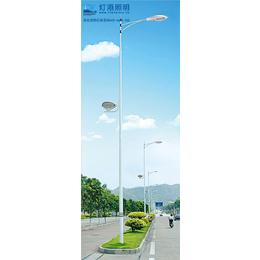 13米双臂路灯、咸阳路灯、灯港照明