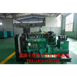 养殖场所专用120千瓦潍坊柴油发电机组优惠价格