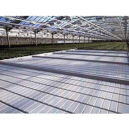 热销温室苗床网-规格全质量好-价格合理-厂家供应
