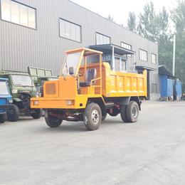 载重8吨矿区自卸四不像运输车 金奥矿用胶轮井下拉渣土车