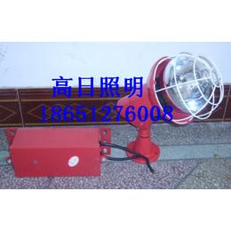 长治江苏天日科技CXTG64钠灯供应商推荐缩略图