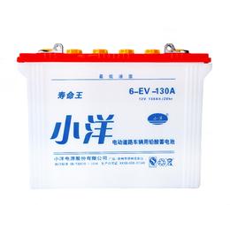 6-EV-130A 旅游观光车新能源电池