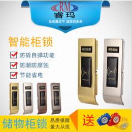 箱柜专用智能门锁批发 电子感应锁 报警浴室锁