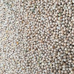 加拿大 白豌豆 黄豌豆 青岛 天津提货