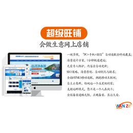 网络营销渠道-芜湖网络营销-安徽万泽公司(查看)