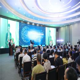 大勝文化傳媒 城西港區2019首屆企業銀行對接會縮略圖