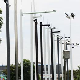 小区监控立杆3米5米6米不锈钢杆子摄像头球枪机立杆可批发定制