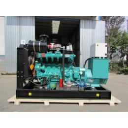 农牧业专用50KW千瓦秸秆气发电机 电热联产燃气发电机组