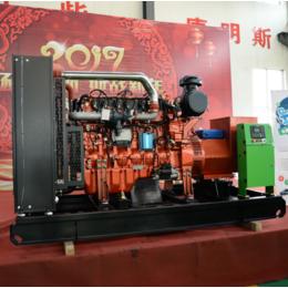 江苏200kw千瓦热电联燃气发电机组厂家 养殖场污水处理专用