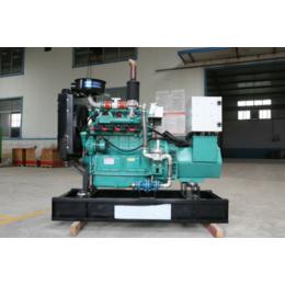 河北养殖场30KW千瓦全自动节能型燃气发电机组价格