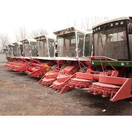秸秆收割机-丰沃机械厂家直销-自走式玉米秸秆收割机