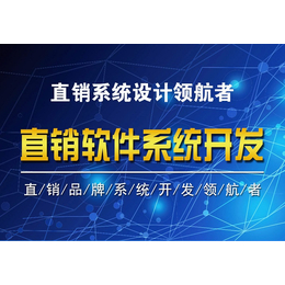 山东天津沈阳 双轨直销软件 双轨制直销 双轨直销系统后台