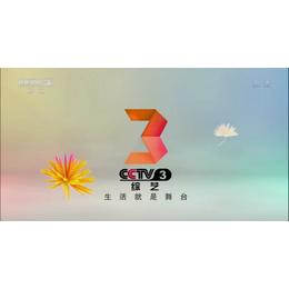 2019年投放中央电视台CCTV-3栏目与时段广告多少钱