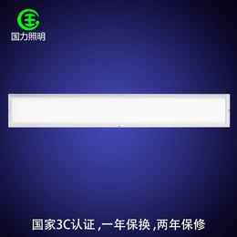 国力照明健康光源-车间LED平板灯多少钱-车间LED平板灯