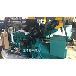 发电机180千瓦价格潍柴柴油发电机组WP10D238E200