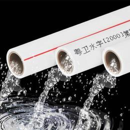 家用自来水管材  ppr热熔管缩略图